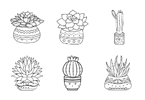 Hand Drawn Plant Pots