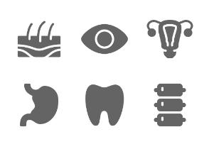 Human Organs ( Solid )