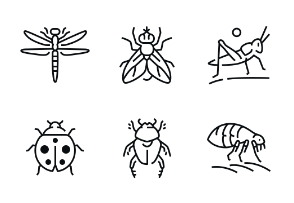 Insects - Highlight Monochrome