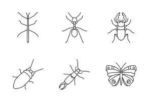 Insects. Linear. Outline