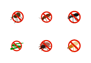 No insect sign - isometric
