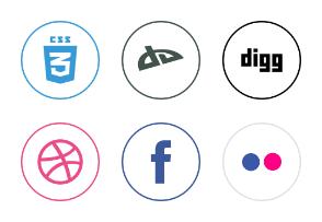 Social icon 2